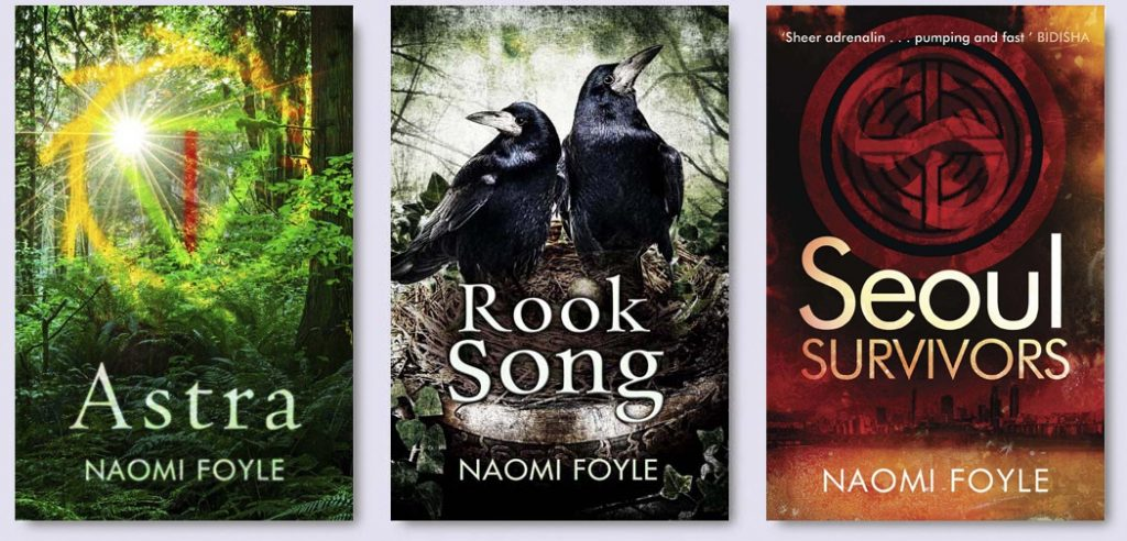 FoyleN-Novels2015-Blog